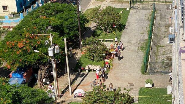 El camión que descargó los productos en los bajos del edificio trajo yucas, boniatos, chopos y guayabas. (14ymedio)