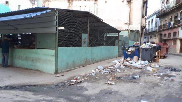 Algunos de los directivos de la empresa encargada de recoger y tratar los desechos en La Habana están en prisión provisional. (14ymedio)