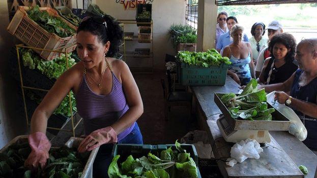 Una empleada despacha vegetales en un mercado estatal. (EFE)