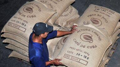 El café sigue exportándose mientras el director de Cafe-Cuba admite que no hay para consumo interno. (Venceremos)