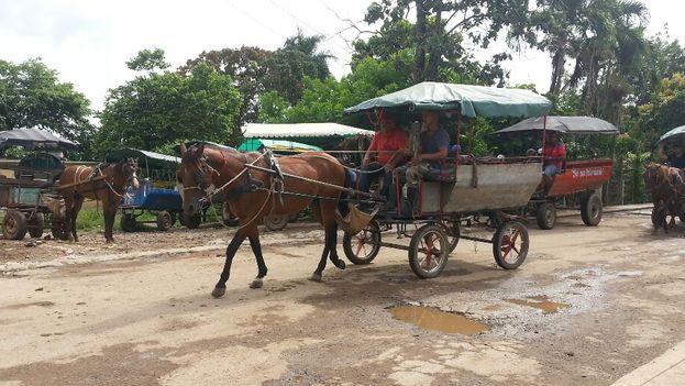 En varios municipios de Artemisa se ha prohibido el paso de coches y bicitaxis por la Carretera Central. (14ymedio)
