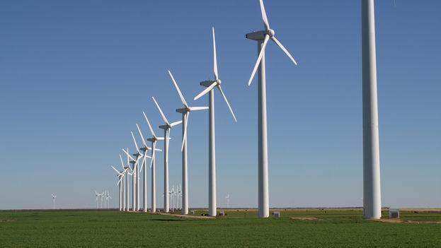 Un parque eólico.
