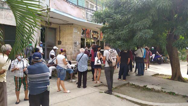 La cola en la pescadería de la calle 25 en El Vedado habanero, para comprar picadillo de claria. (14ymedio)