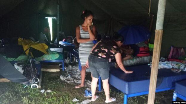 Los migrantes no han presentado hasta la fecha contagios de coronavirus (Radio Televisión Martí)