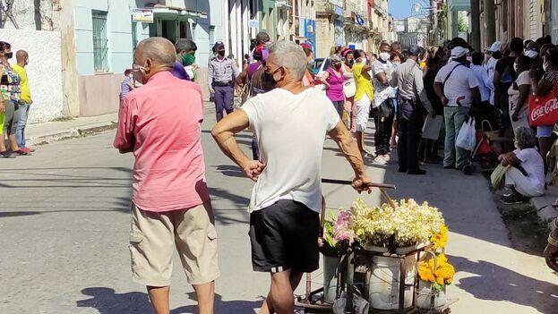 El principal foco es La Habana, donde se confirmaron 579 casos en las últimas 24 horas, para una tasa de incidencia de 300,2. (14ymedio)