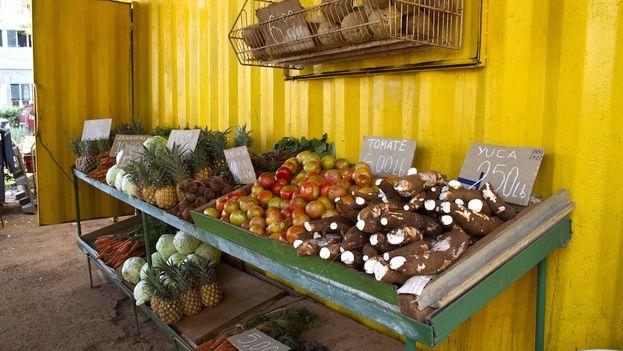 Los altos precios de los productos agrícolas están en el centro de las quejas de la población cubana. (Silvia Corbelle/14ymedio)