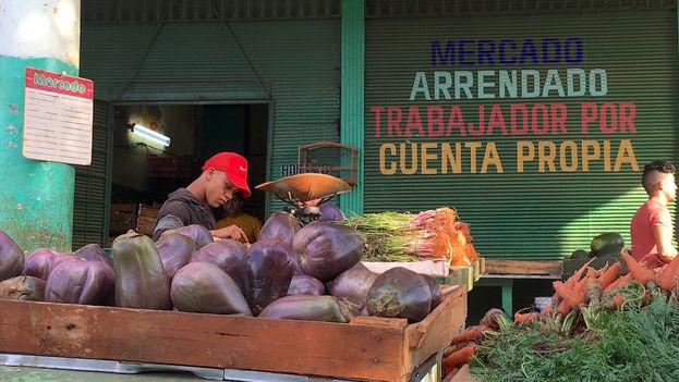 En lo que va de año se han registrado en la Isla más de 556.064 cuentapropistas y su ingreso al movimiento sindical cubano es voluntario. (14ymedio)