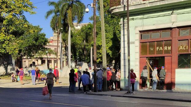 Los remedios de las abuelas ganan popularidad ante la escasez de medicamentos en farmacias y hospitales cubanos. (14ymedio)
