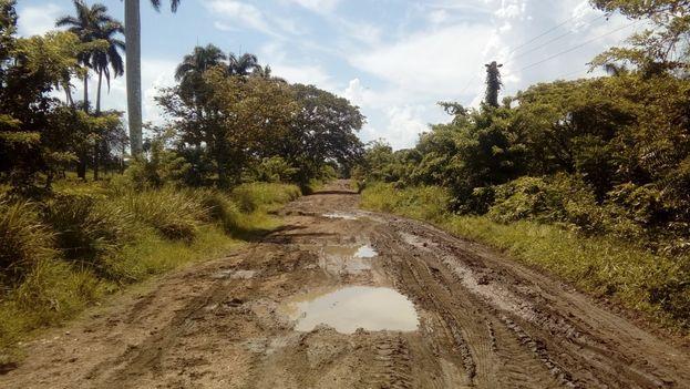 Los residentes en el municipio de Jimaguayú se quejan del mal estado de los caminos. (14ymedio)