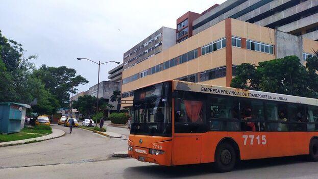 Desde este sábado se restablecen además todas las rutas en el servicio urbano de ómnibus. (14ymedio)