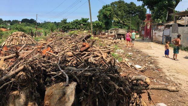 El saco de carbón vegetal se vende a 100 pesos en negocios privados, pero llega para que las familias sobrevivan. (14ymedio)