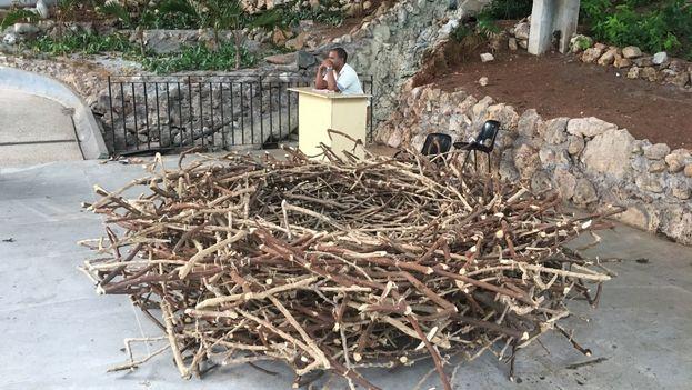 La obra 'Medialuna' reproduce el concepto del nido vacío en un país con altas cifras de emigración. (14ymedio)