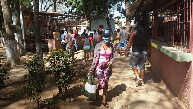 Cola en el mercado estatal de la Plaza Joaquín de Agüero en Camagüey, para adquirir plátano burro, el único producto a la venta a comienzos de mayo. (14ymedio)