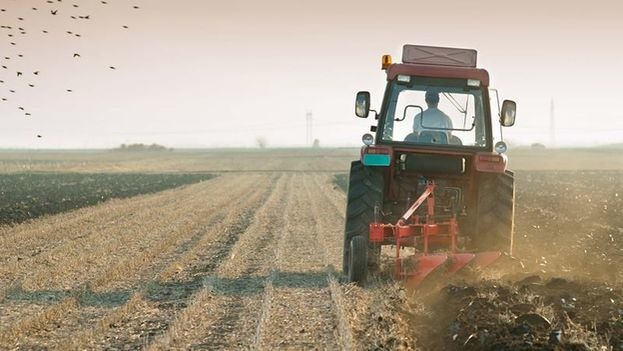 Among the goods that fall into the illegal market are parts for agricultural machinery