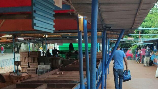 Tarimas vacías en el mercado del EJT de la calle 17 y K en El Vedado (La Habana, Cuba). (14ymedio)
