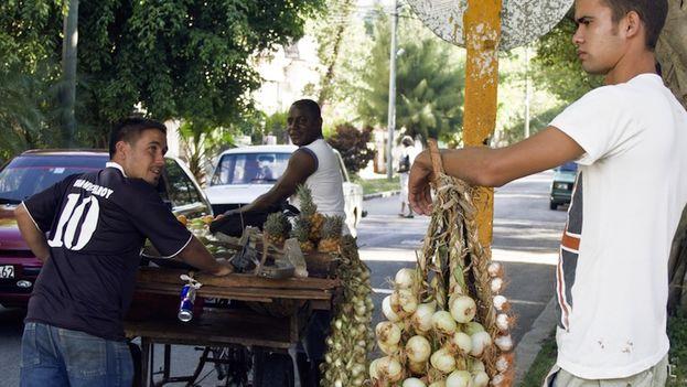 Vendedor de cebollas. (14ymedio)