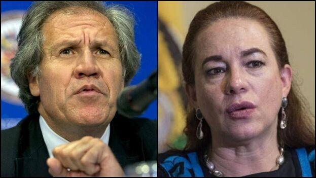 Luis Almagro tratará en marzo de reelegirse como Secretario General de la OEA y su más dura contendiente es la ecuatoriana María Fernanda Espinosa. (Collage)