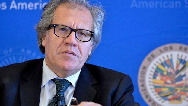 Almagro recibió el apoyo de 23 de los 34 miembros activos de la OEA. (@Almagro_OEA2015)