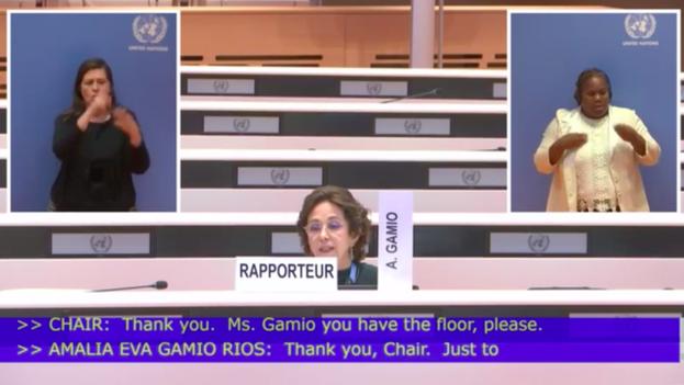 Amalia Gamio, integrante del Comité, salió en defensa de las organizaciones independientes de la Isla frente a Rodolfo Reyes Rodríguez, jefe de la delegación gubernamental. (Captura)
