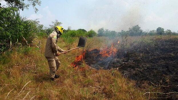 Bomberos del Estado de Acre trabajando en la extinción del incendio en la selva amazónica en la región de Cruzeiro do Sul.  (EFE)