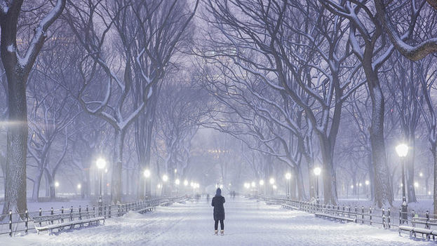 Central Park, en Manhattan, durante la tormenta de este 26 de enero. (Anthony Quintano/Flickr)