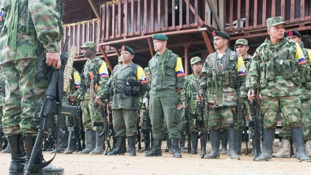 Unidades de las FARC preparándose para marchar. (@FARC_EPueblo)