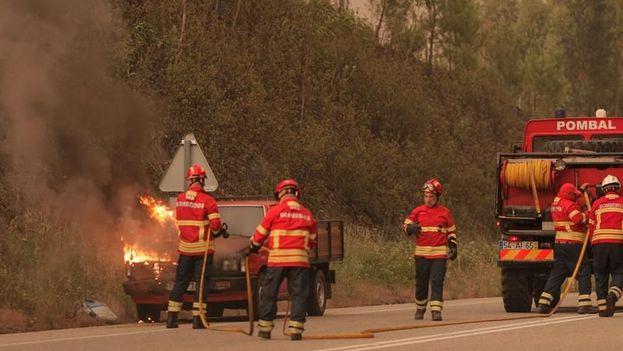 """La peor escena se vivió en una carretera que une los municipios de Figueiró dos Vinhos y Castanheira de Pera, en el distrito de Leiria, donde 18 personas, entre ellas """"familias enteras"""" perecieron en sus autos. (EFE)"""