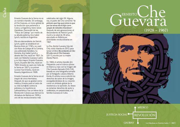 """Fragmento de la exposición original de """"La presencia irlandesa en América Latina"""". (Captura)"""