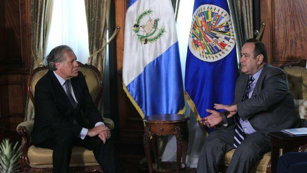 Giammattei y Almagro conversaron este jueves en la sede gubernamental guatemalteca sobre varios temas, incluida Venezuela. (LuisAlmagroOEA)