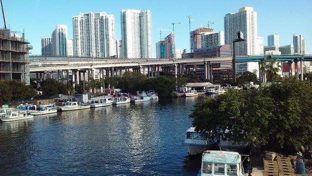 Hermosa vista del río de Miami y el centro financiero, comercial y de gobierno, captados desde donde empieza la Pequeña Habana. Bajo esos puentes acamparon y fueron procesados y distribuidos miles de integrantes del éxodo de Mariel. (Cortesía)