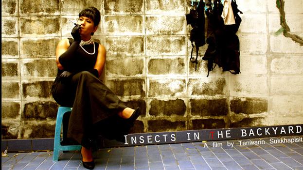 'Insects in the Backyard' incluye escenas de un supuesto parricidio, sexo explícito, prostitución de adolescentes y un pene. (poster)