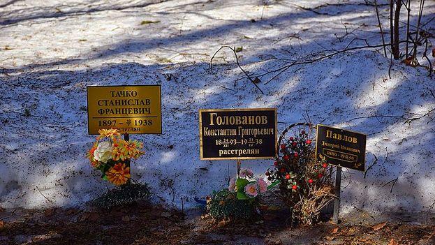 Kommunarka, lugar de ejecución de las víctimas de la represión política, Moscú. (Wikimedia)