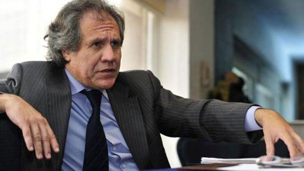 Luis Almagro, secretario general de la OEA. (EFE)