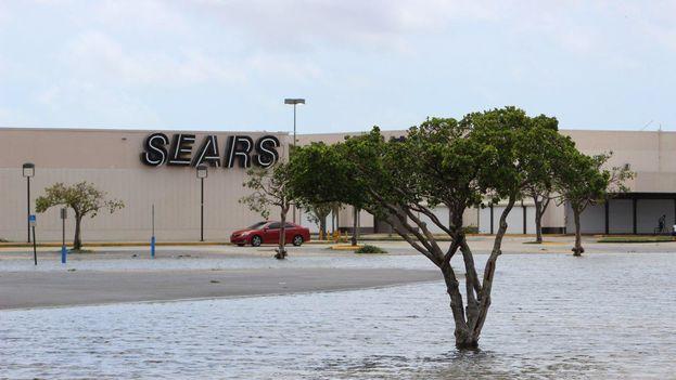 Miami despertó este lunes con los estragos del paso del huracán Irma. (14ymedio)