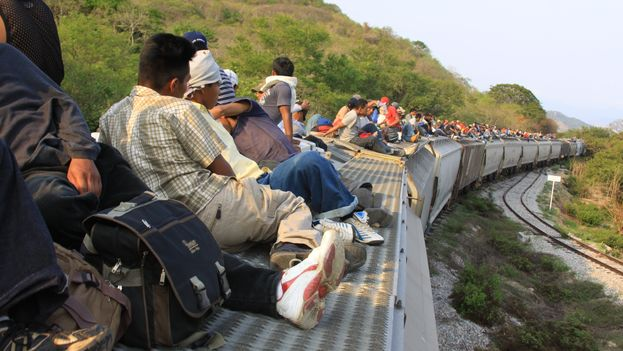 Miles de inmigrantes centroamericanos buscan llegar a bordo de La Bestia a la frontera sur de Estados Unidos o trabajar en México. (EFE)