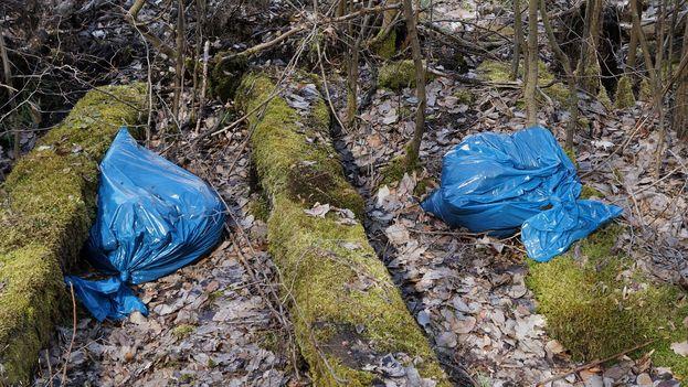 La NEMA asegura que las bolsas de plástico constituyen el 9% de los desechos totales que genera el país y el 90% del daño medioambiental. (Pixabay)