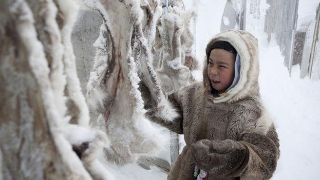 Niño inuit limpiando pieles para confeccionar ropa (Canadá). (Foto EFE)