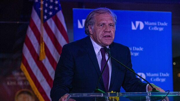 El secretario general de la OEA, Luis Almagro en la Torre de la Libertad de Miami (EFE)