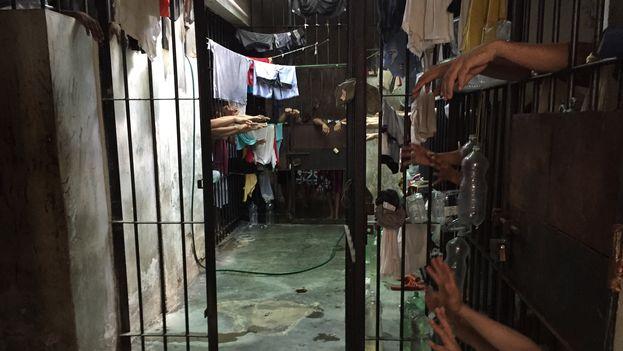 La ONG venezolana denunció un hacinamiento del 153% en el servicio penitenciario. (OVP)