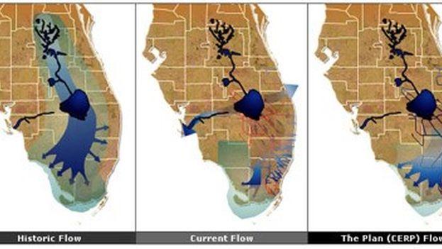 Plan gubernamental para la restauración de los Everglades en el sur de Florida.