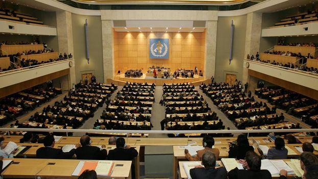 Plenaria de la Asamblea Mundial de la Salud. (OMS)