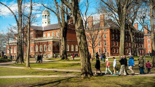 Campus de la Universidad de Harvard, en Cambridge, Massachusetts. (CC)