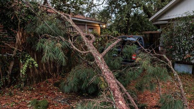 Una rama de árbol caída tras el paso del huracán 'Zeta' en Mobile, Alabama, este 29 de octubre de 2020. (EFE/EPA/Dan Anderson)