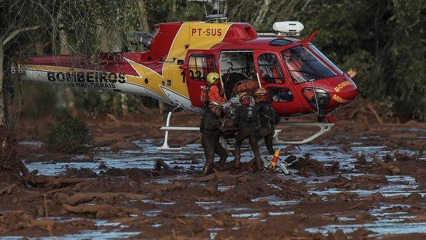 Los bomberos sacan un cuerpo durante las tareas de búsqueda y rescate de las víctimas por la rotura de la represa de la compañía Vale, en Brumadinho. (EFE)