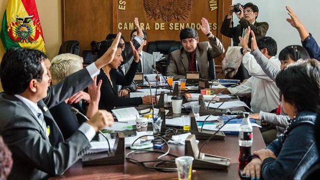 La comisión mixta votó este martes a favor del proyecto de Ley. (@SenadoBolivia)