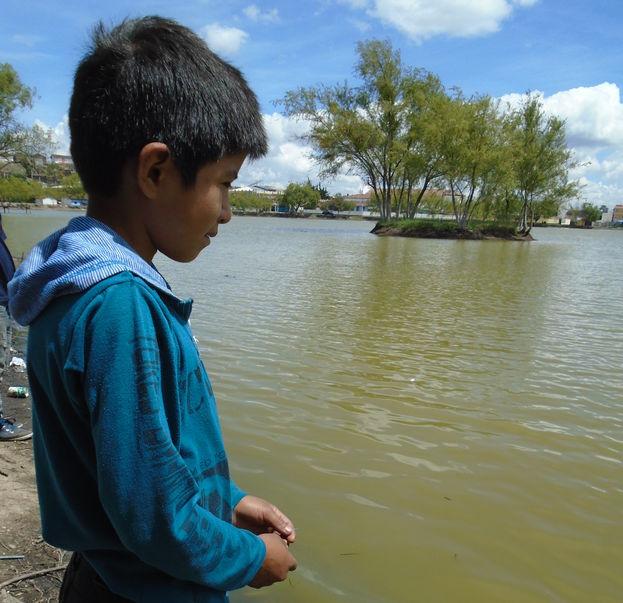 Los niños que no tienen tiempo para ir a la escuela porque se impone el deber de alimentarse. (M.J. Penton/14ymedio)