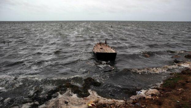 En apenas 90 días de funcionamiento, a simple vista es perceptible el impacto favorable en el ecosistema de Laguna Larga. (EFE)