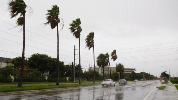 El paso del huracán por Miami se saldó con poco más que cortes de luz y fuertes lluvias. (@mariojose_cuba)