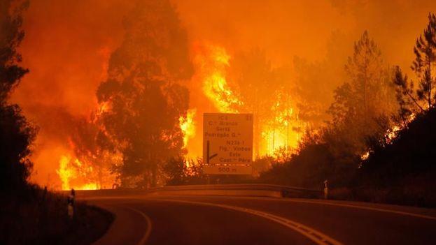 Un incendio de grandes proporciones deja decenas de muertos en Portugal. (EFE)