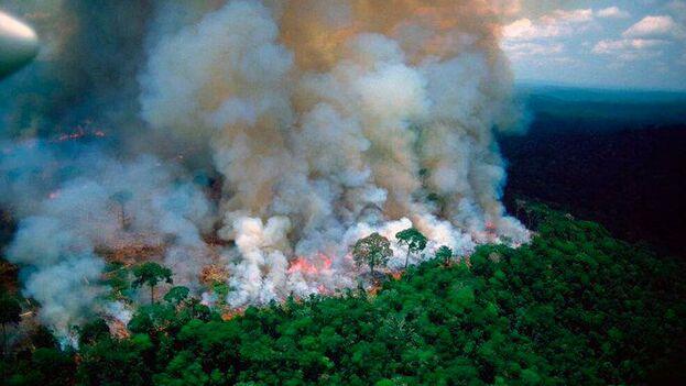 Los incendios en la Amazonía se convirtieron en tendencia en las redes sociales. (EFE)